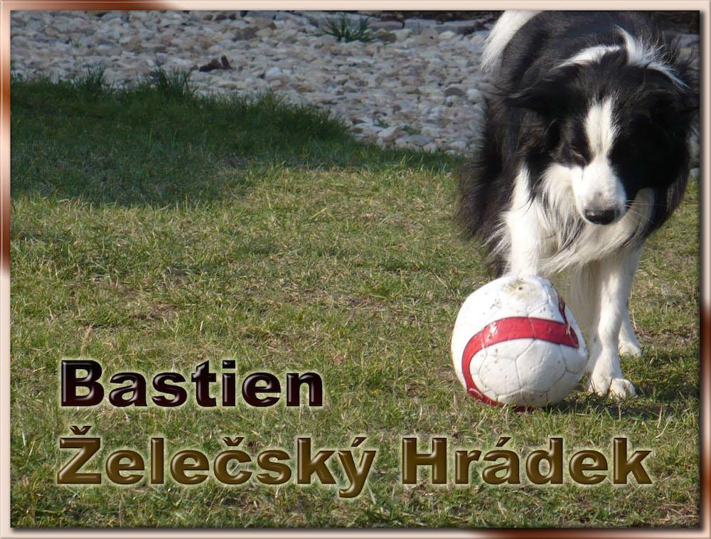bastien_zelecsky_hradek_1